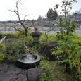 森野吉野葛本舗の小庭