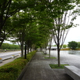 佐川美術館50